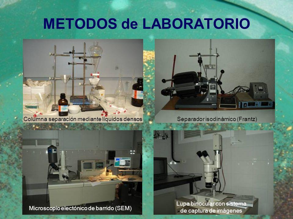 METODOS de LABORATORIO Microscopio electónico de barrido (SEM) Columna separación mediante líquidos densos Separador isodinámico (Frantz) Lupa binocul