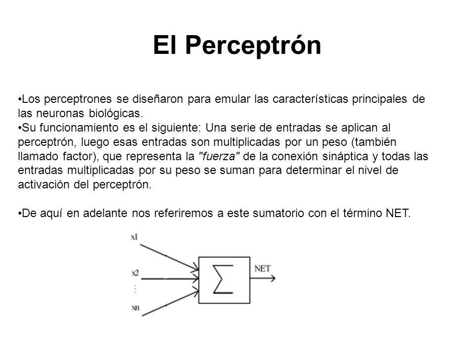 El Perceptrón Los perceptrones se diseñaron para emular las características principales de las neuronas biológicas. Su funcionamiento es el siguiente: