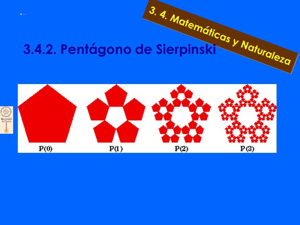 3. 4. Matemáticas y Naturaleza a... 3.4.1 Obtención de Fractales