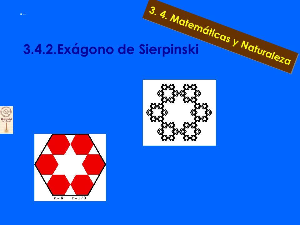 3. 4. Matemáticas y Naturaleza a... 3.4.2. Pentágono de Sierpinski