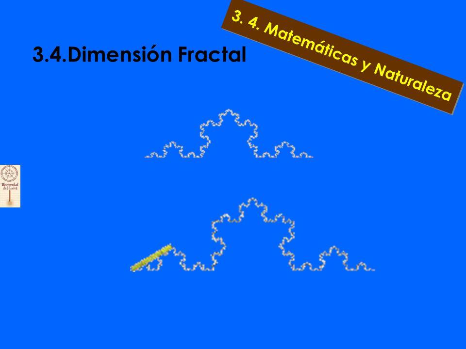 3. 4. Matemáticas y Naturaleza a... 3.4.3. Dragon