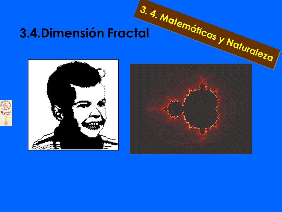 3.4.Dimensión Fractal 3. 4. Matemáticas y Naturaleza