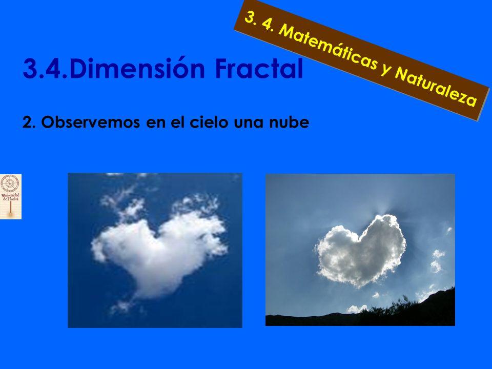 3.4.Dimensión Fractal 1.