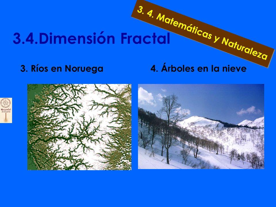 3.4.Dimensión Fractal 2. Observemos el perfil de una costa 3. 4. Matemáticas y Naturaleza