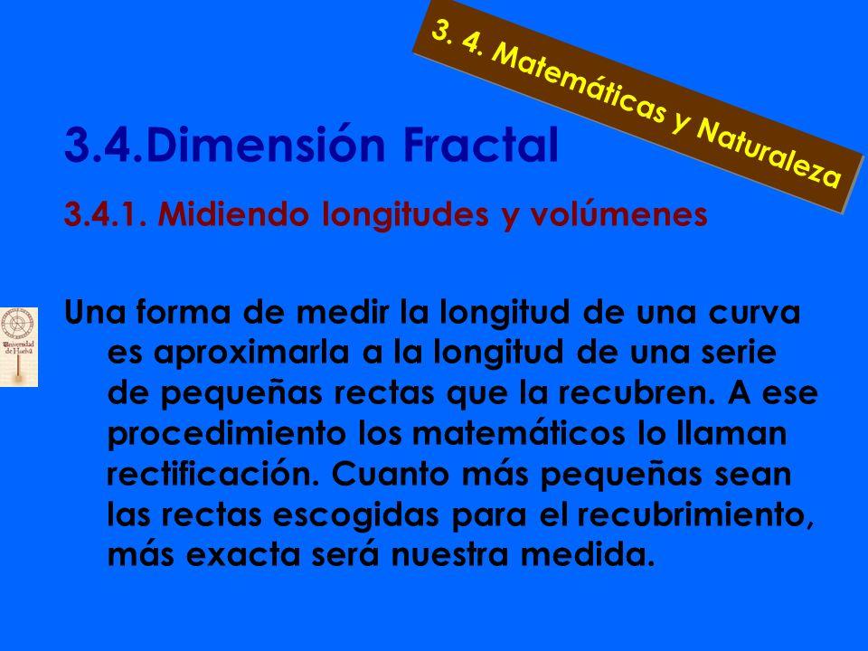 3.4.Dimensión Fractal 3. Ríos en Noruega 4. Árboles en la nieve 3. 4. Matemáticas y Naturaleza