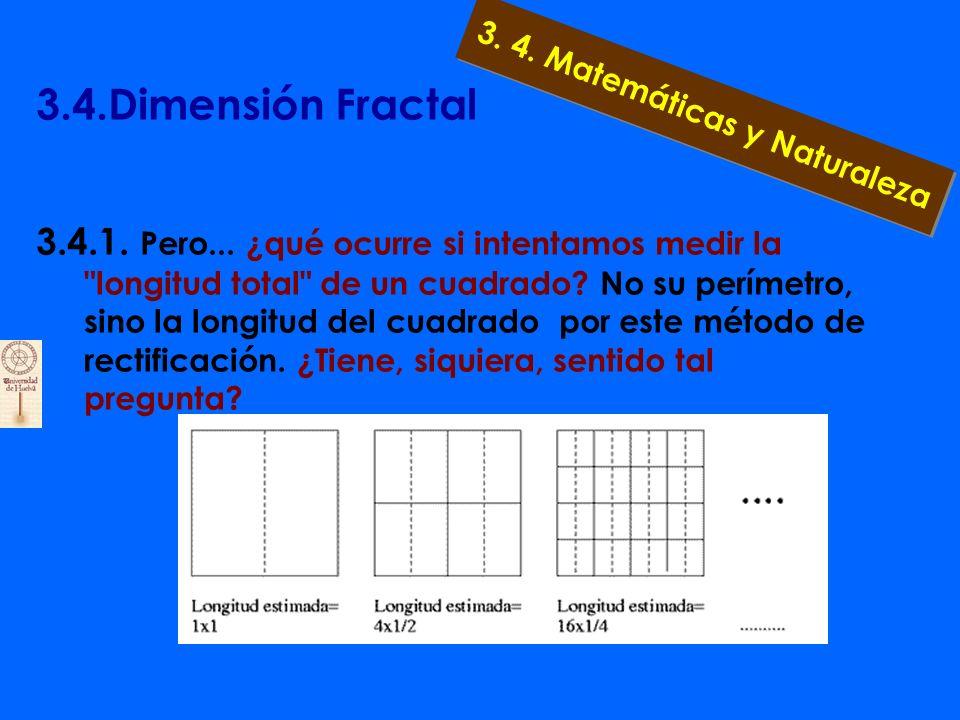3.4.Dimensión Fractal 3.4.1. Midiendo longitudes y volúmenes Una forma de medir la longitud de una curva es aproximarla a la longitud de una serie de