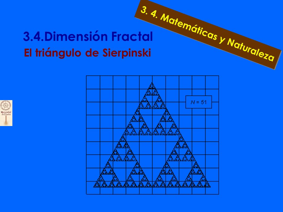 3.4.Dimensión Fractal 3.4.3. ¿Sorpresa .