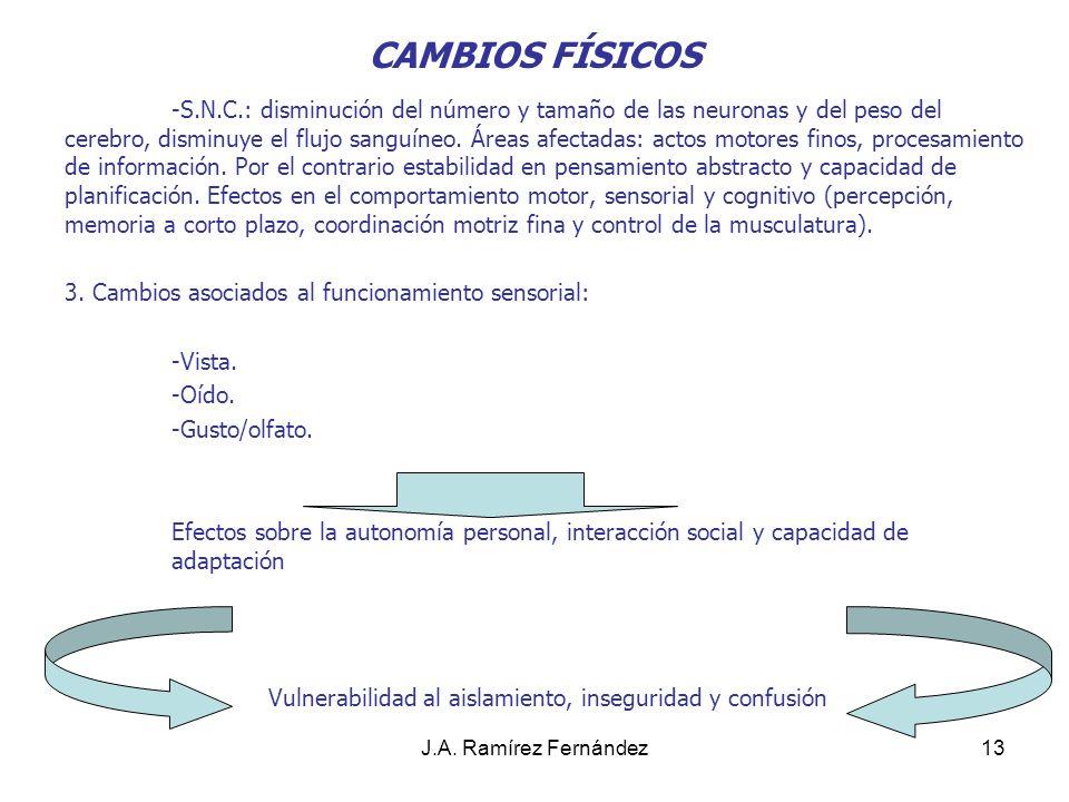 J.A.Ramírez Fernández14 CAMBIOS FÍSICOS CONCLUSIONES 1.