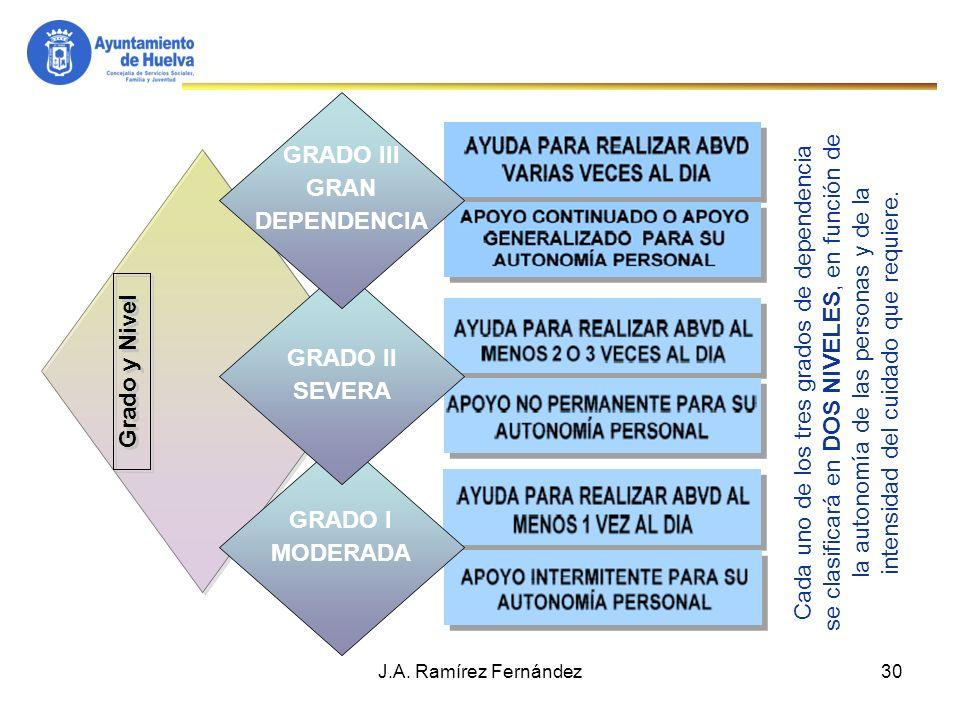 31 Catalogo de Servicios, Prestaciones y Subvenciones S.A.D.