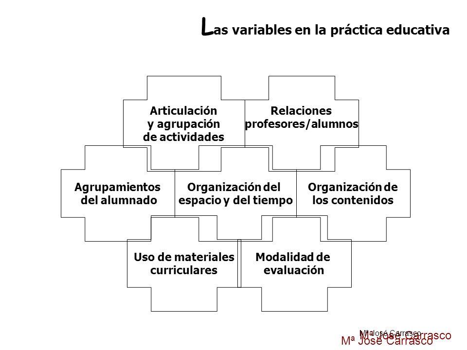 Articulación y agrupación de actividades Relaciones profesores/alumnos Organización del espacio y del tiempo Organización de los contenidos Agrupamien