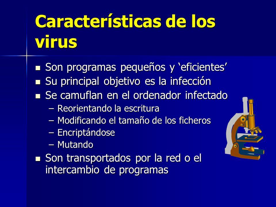 Características de los virus Son programas pequeños y eficientes Son programas pequeños y eficientes Su principal objetivo es la infección Su principa