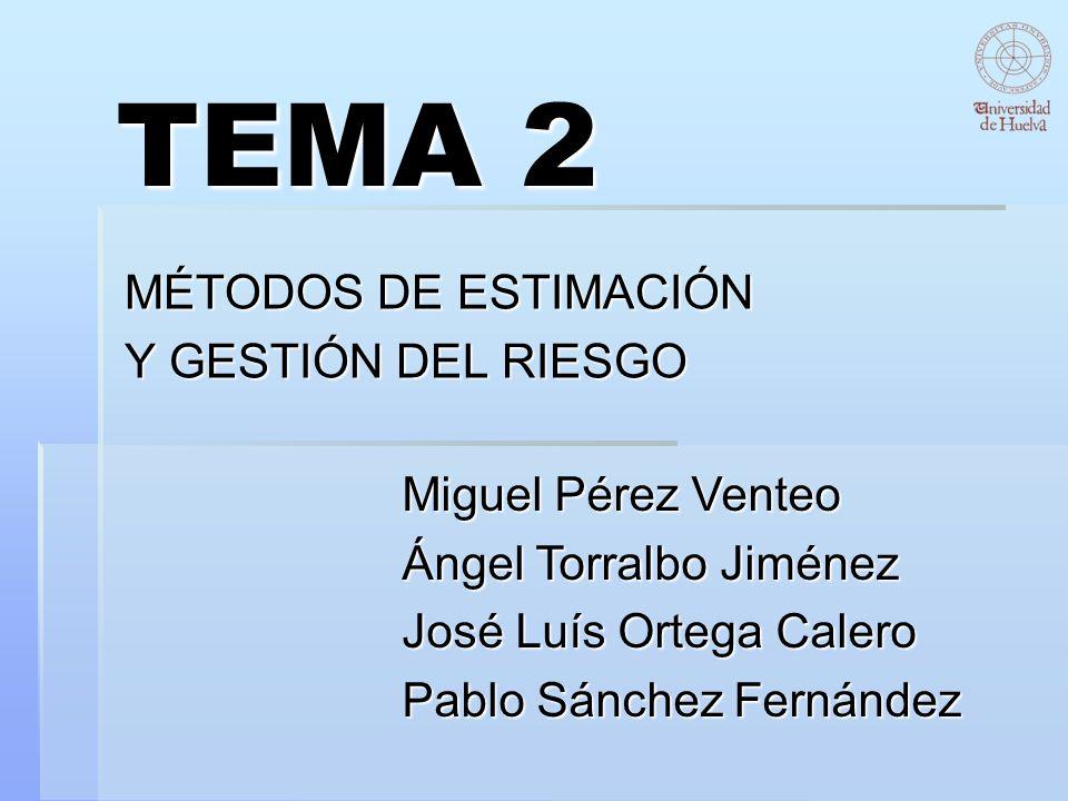 TEMA 2 MÉTODOS DE ESTIMACIÓN Y GESTIÓN DEL RIESGO Miguel Pérez Venteo Ángel Torralbo Jiménez José Luís Ortega Calero Pablo Sánchez Fernández