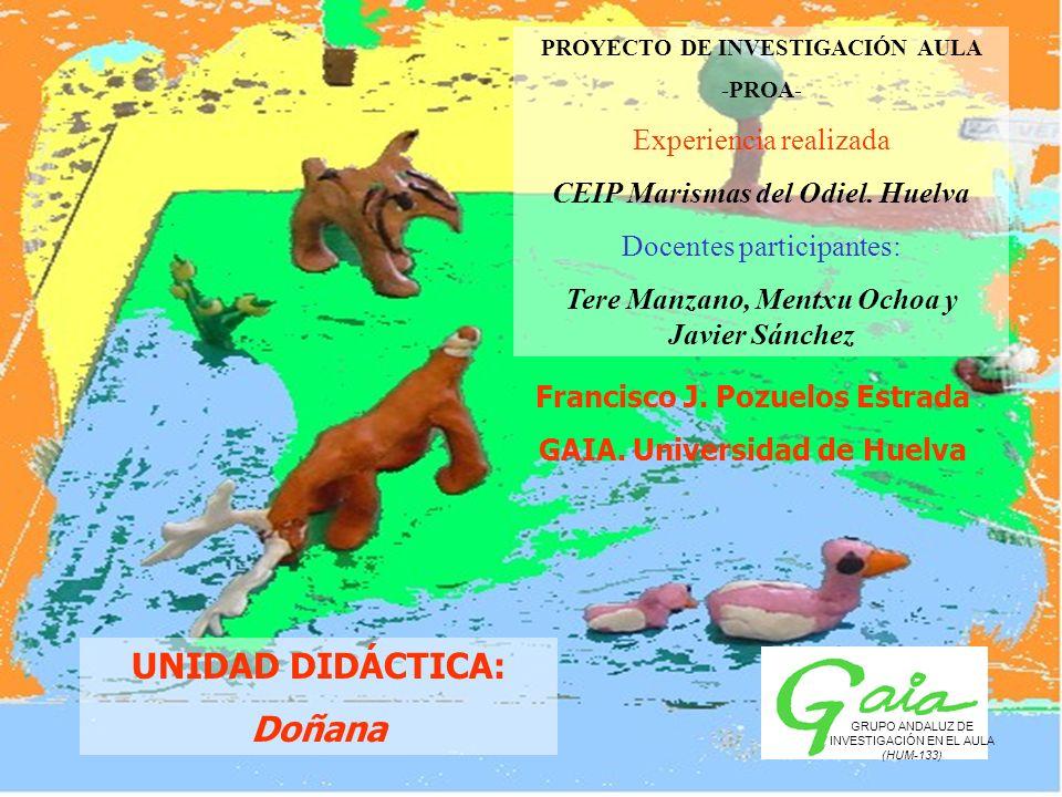 UNIDAD DIDÁCTICA: Doñana PROYECTO DE INVESTIGACIÓN AULA -PROA- Experiencia realizada CEIP Marismas del Odiel. Huelva Docentes participantes: Tere Manz
