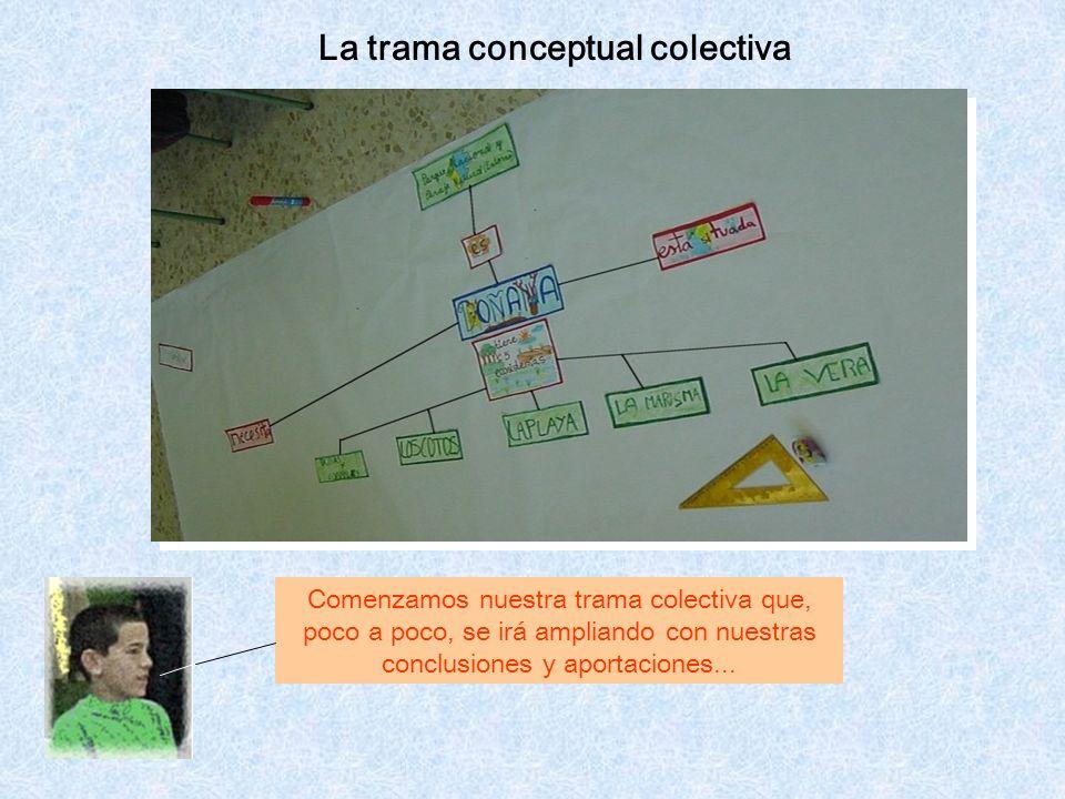 La trama conceptual colectiva Comenzamos nuestra trama colectiva que, poco a poco, se irá ampliando con nuestras conclusiones y aportaciones...