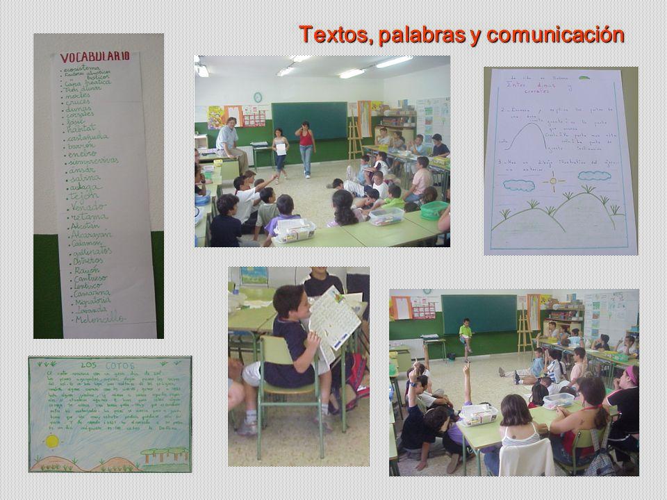 Textos, palabras y comunicación