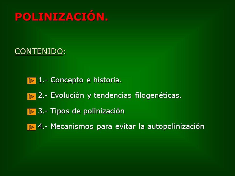 3.1.- Polinización por vectores inanimados 3.1.2.Agua: Hidrofilia.