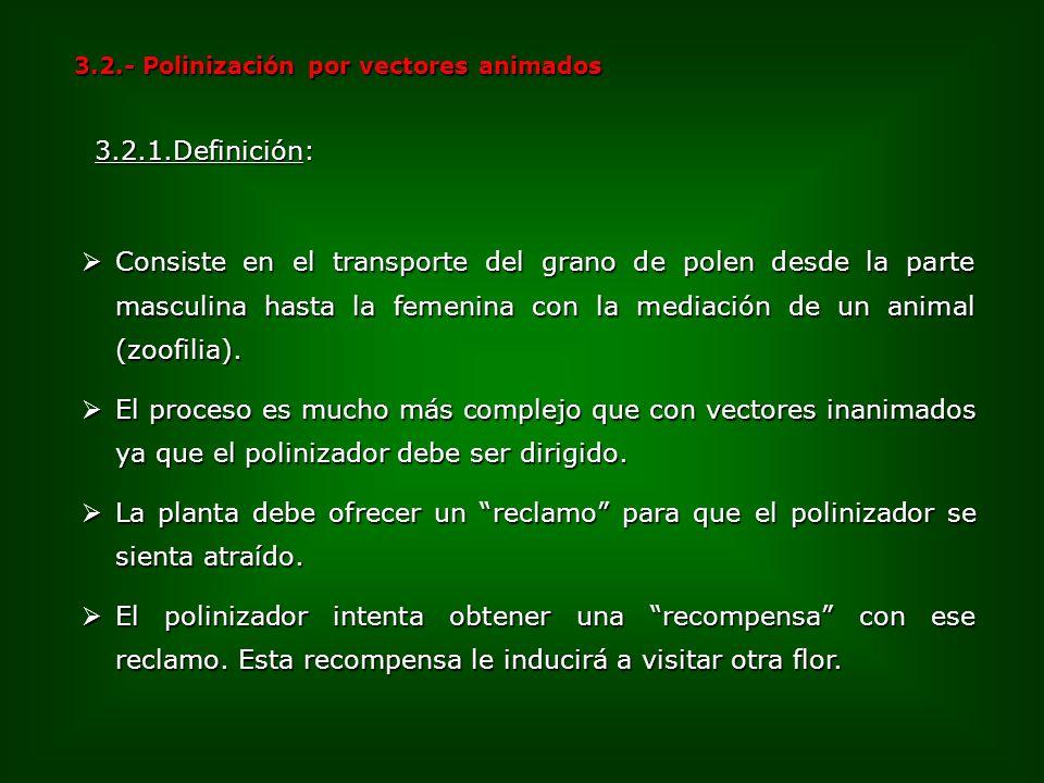 3.2.- Polinización por vectores animados Consiste en el transporte del grano de polen desde la parte masculina hasta la femenina con la mediación de u