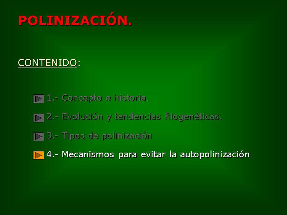 POLINIZACIÓN. CONTENIDO: 1.- Concepto e historia. 2.- Evolución y tendencias filogenéticas. 3.- Tipos de polinización 4.- Mecanismos para evitar la au