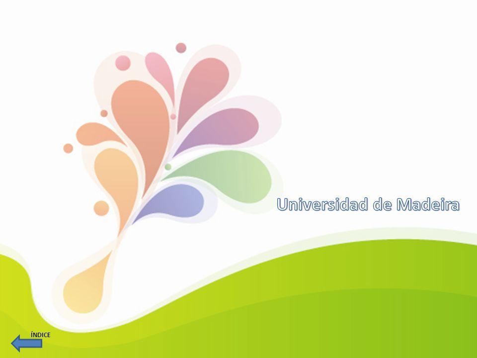 Nombre del recurso:SEE (Simulaçao empresarial e empreendedorismo) En qué consiste: El objetivo central de este proyecto es contribuir al incremento del emprendimiento en la Región Autónoma de Madeira.