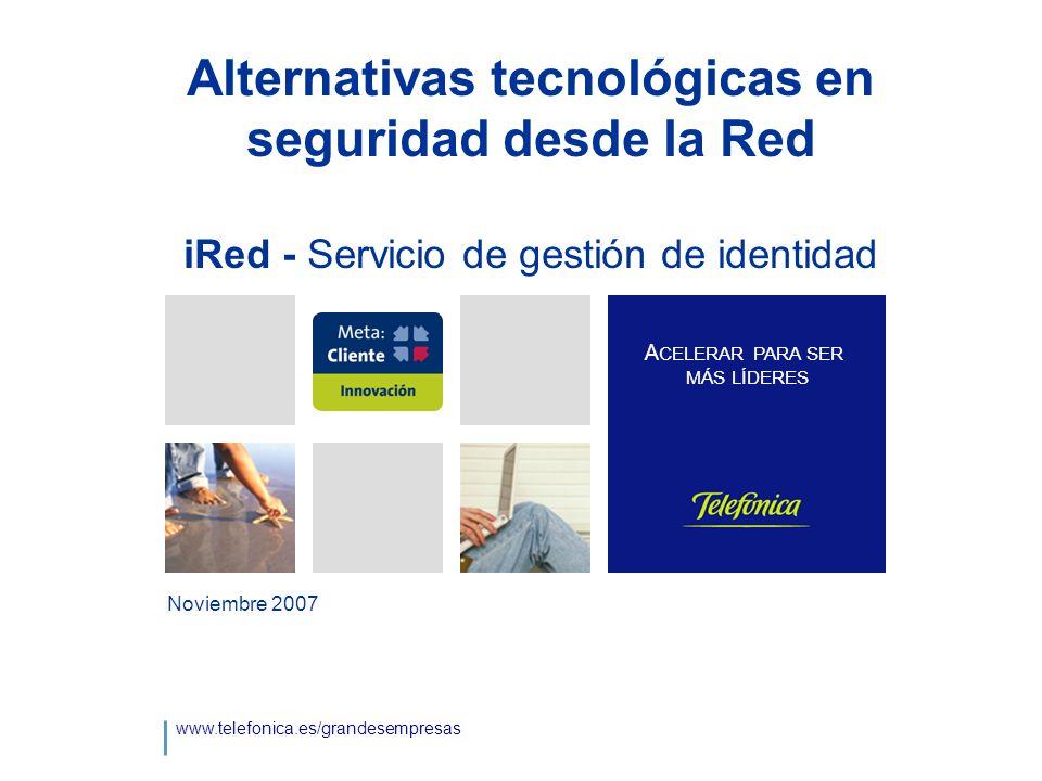 Alternativas tecnológicas en seguridad desde la Red iRed - Servicio de gestión de identidad Noviembre 2007 www.telefonica.es/grandesempresas A CELERAR PARA SER MÁS LÍDERES