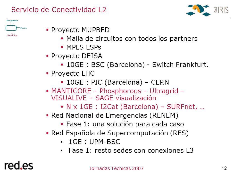 12Jornadas Técnicas 2007 Servicio de Conectividad L2 Proyecto MUPBED Malla de circuitos con todos los partners MPLS LSPs Proyecto DEISA 10GE : BSC (Barcelona) - Switch Frankfurt.