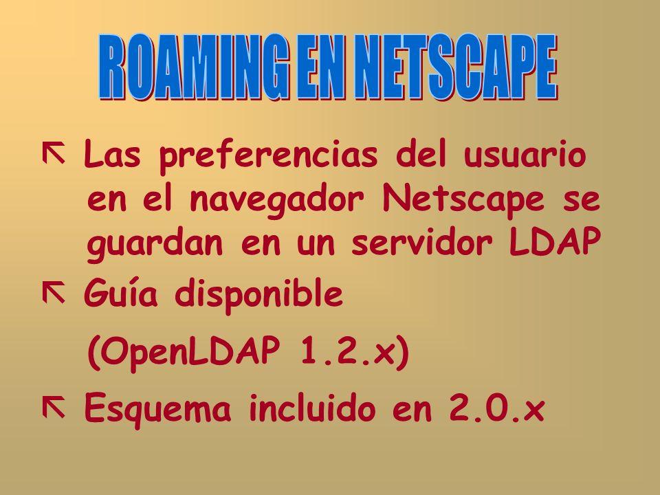 Las preferencias del usuario en el navegador Netscape se guardan en un servidor LDAP Guía disponible (OpenLDAP 1.2.x) Esquema incluido en 2.0.x