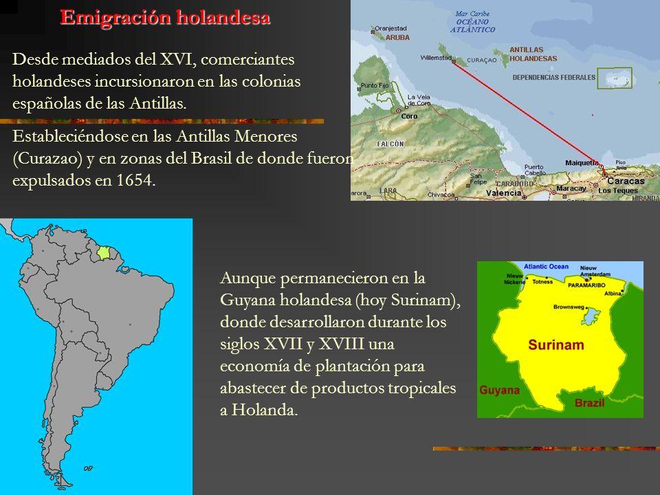 Desde mediados del XVI, comerciantes holandeses incursionaron en las colonias españolas de las Antillas. Estableciéndose en las Antillas Menores (Cura