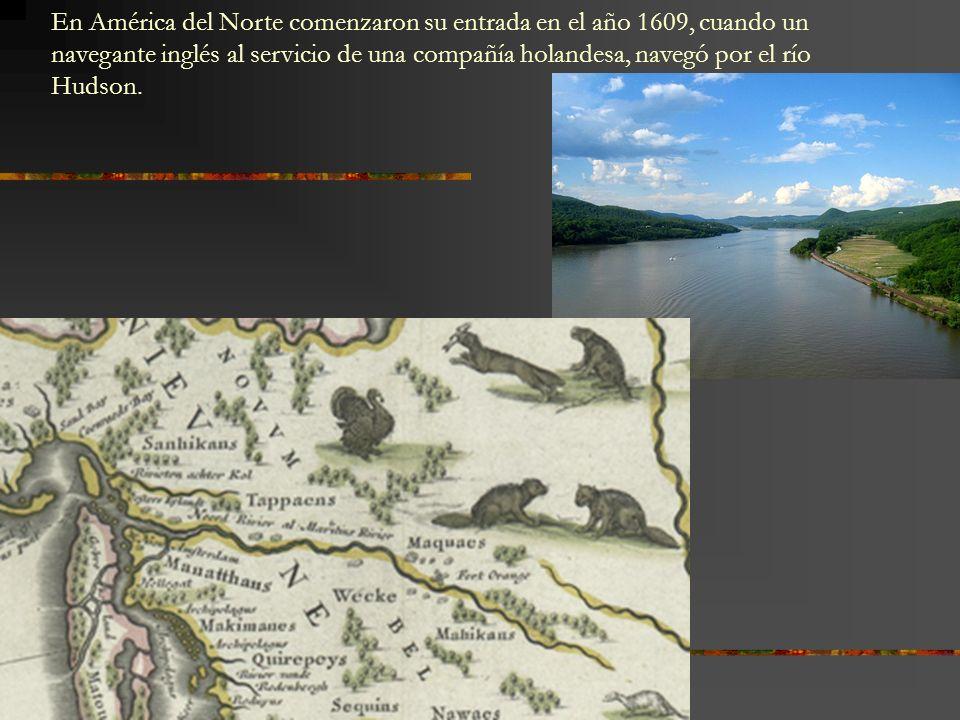 En América del Norte comenzaron su entrada en el año 1609, cuando un navegante inglés al servicio de una compañía holandesa, navegó por el río Hudson.