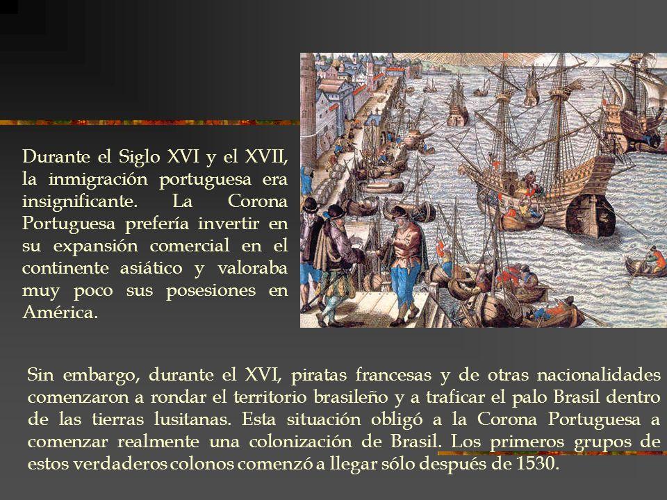 Sin embargo, durante el XVI, piratas francesas y de otras nacionalidades comenzaron a rondar el territorio brasileño y a traficar el palo Brasil dentr