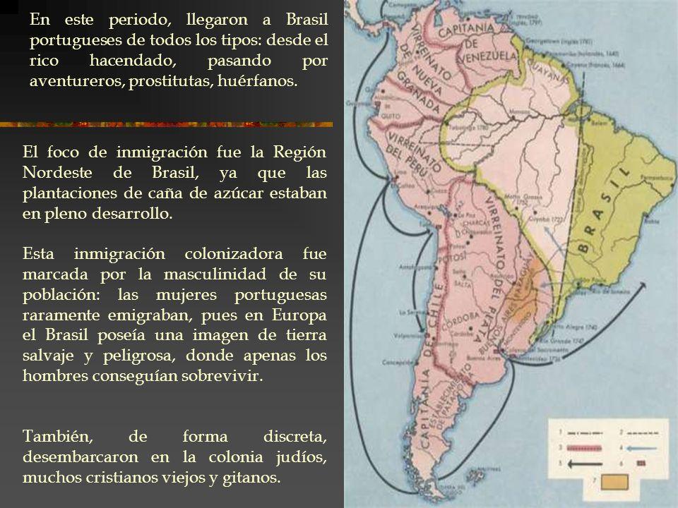 En este periodo, llegaron a Brasil portugueses de todos los tipos: desde el rico hacendado, pasando por aventureros, prostitutas, huérfanos. El foco d