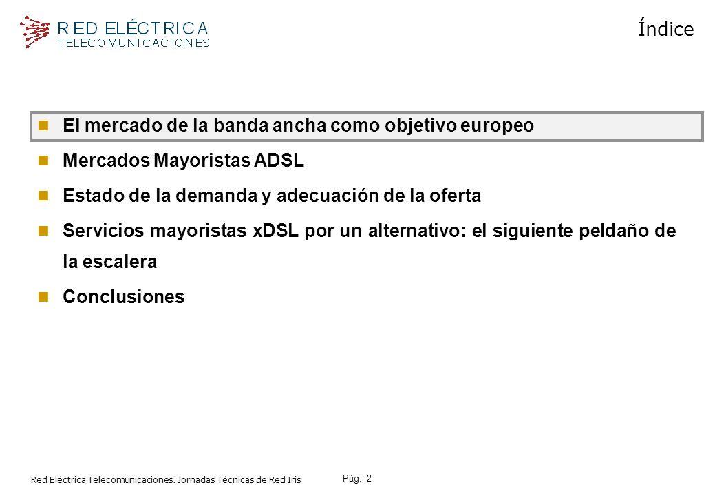 Pág.13 Red Eléctrica Telecomunicaciones.