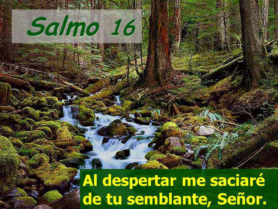 Salmo 16 Al despertar me saciaré de tu semblante, Señor.