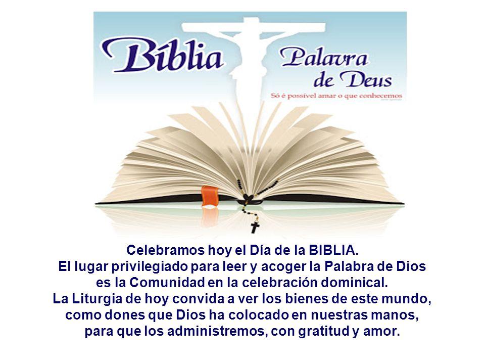 Celebramos hoy el Día de la BIBLIA.