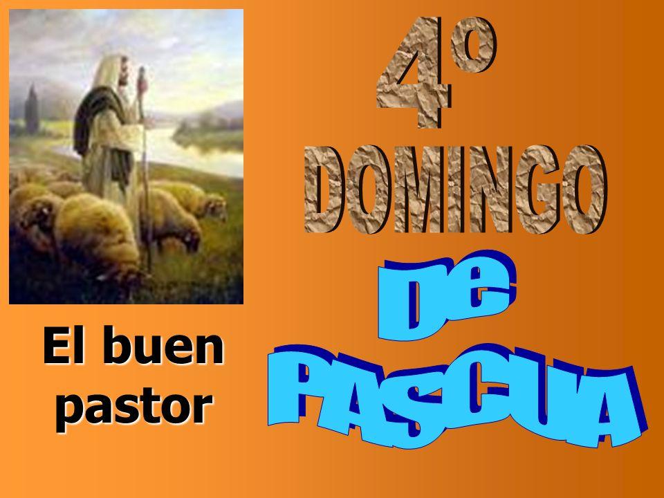 El Señor es mi pastor, nada me falta: en verdes praderas me hace recostar me conduce hacia fuentes tranquilas y repara mis fuerzas.