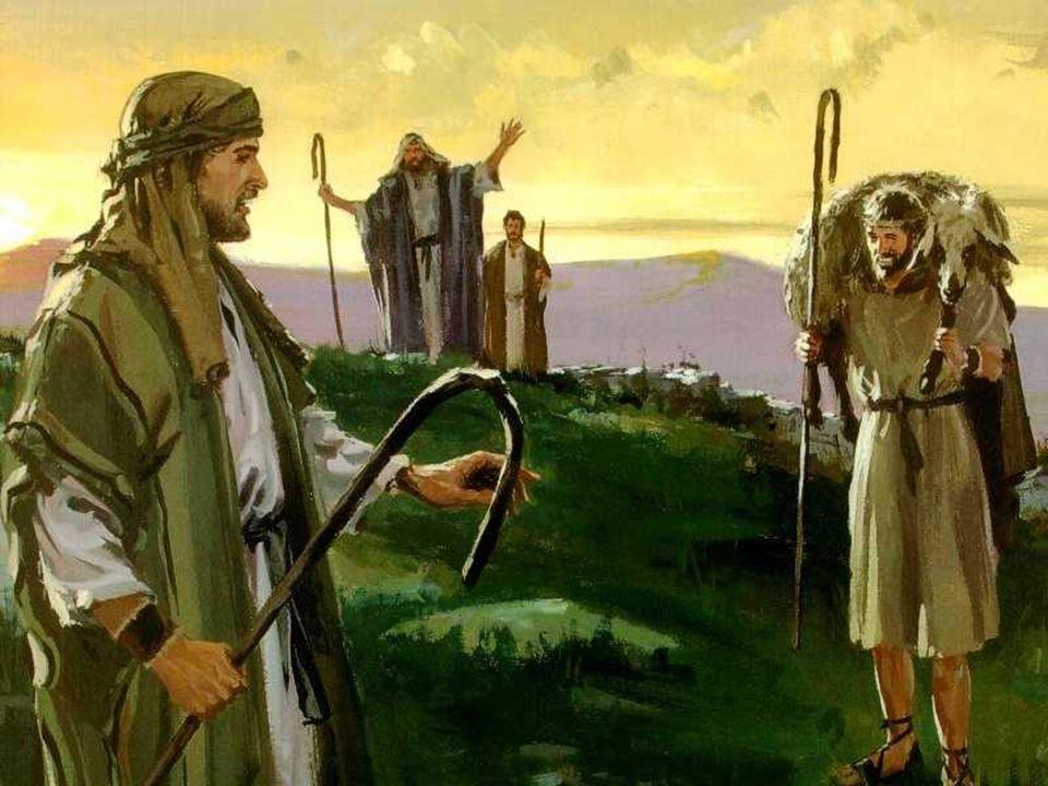 Celebramos hoy el Domingo del BUEN PASTOR. Es una imagen muy conocida ya en el Antiguo Testamento.