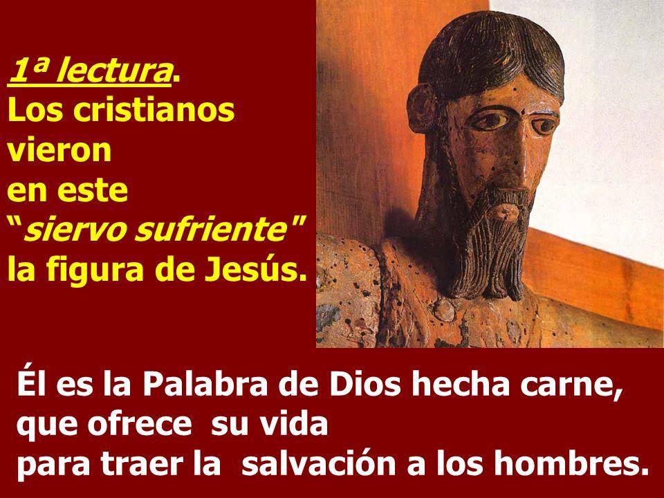 1ª lectura.Los cristianos vieron en estesiervo sufriente la figura de Jesús.