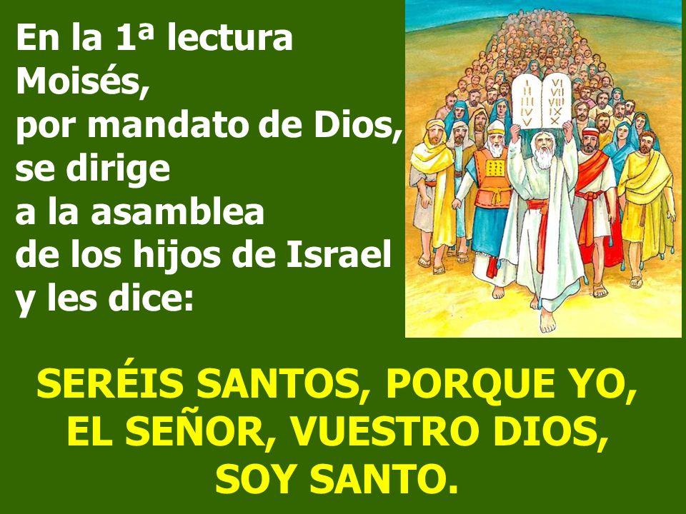 En este domingo, continúa el Sermón de la Montaña. Jesús nos presenta la esencia de su enseñanza: El AMOR, para que seamos