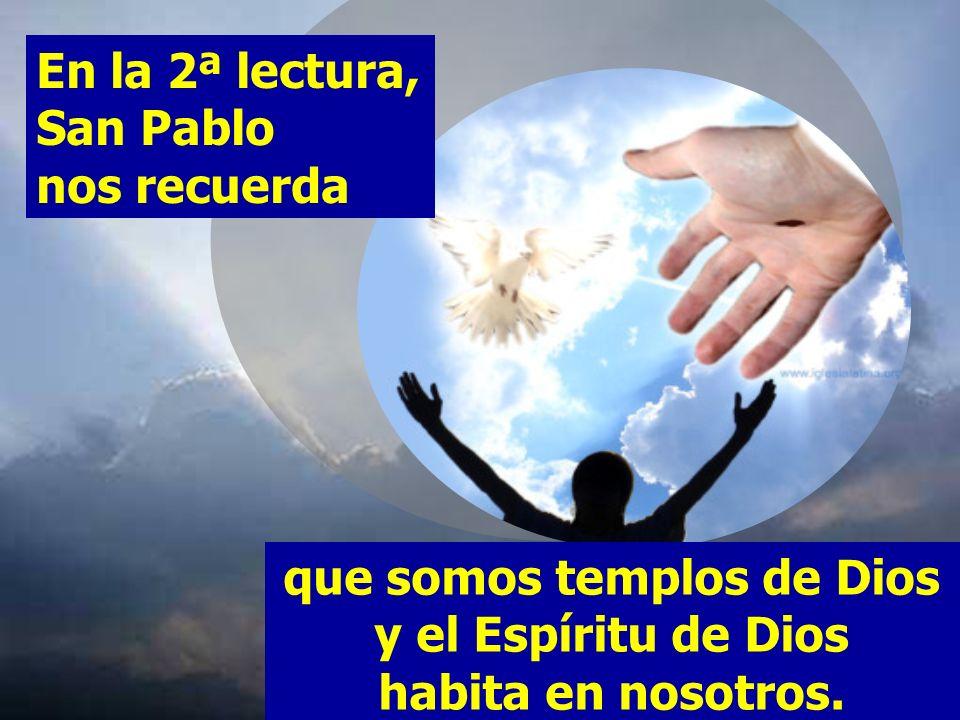 SERÉIS SANTOS, PORQUE YO, EL SEÑOR, VUESTRO DIOS, SOY SANTO. En la 1ª lectura Moisés, por mandato de Dios, se dirige a la asamblea de los hijos de Isr