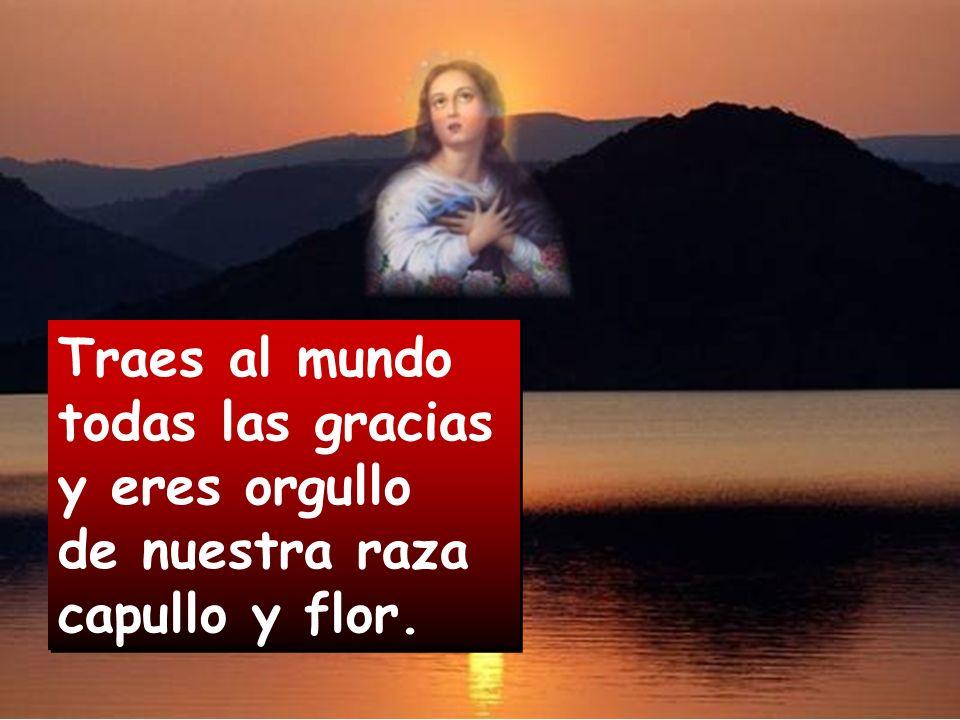 Por tu fe casta eres dichosa; y por esclava eres Señora Madre de Dios. Por tu fe casta eres dichosa; y por esclava eres Señora Madre de Dios.