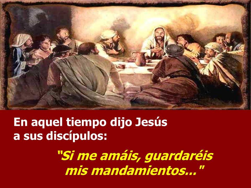 El Evangelio es parte del discurso de la DESPEDIDA de Jesús. Los discípulos se muestran abatidos y tristes... Jesús los anima, declarando que no los d