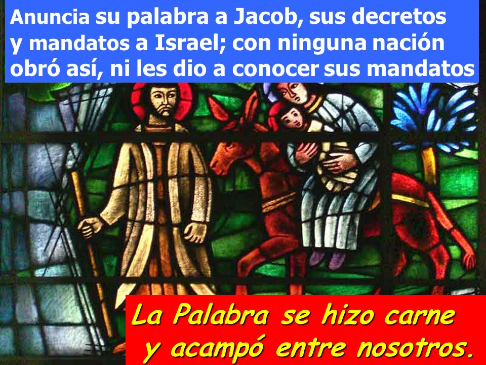 Ha puesto paz en tus fronteras, te sacia con flor de harina; El envía su mensaje a la tierra y su palabra corre veloz.