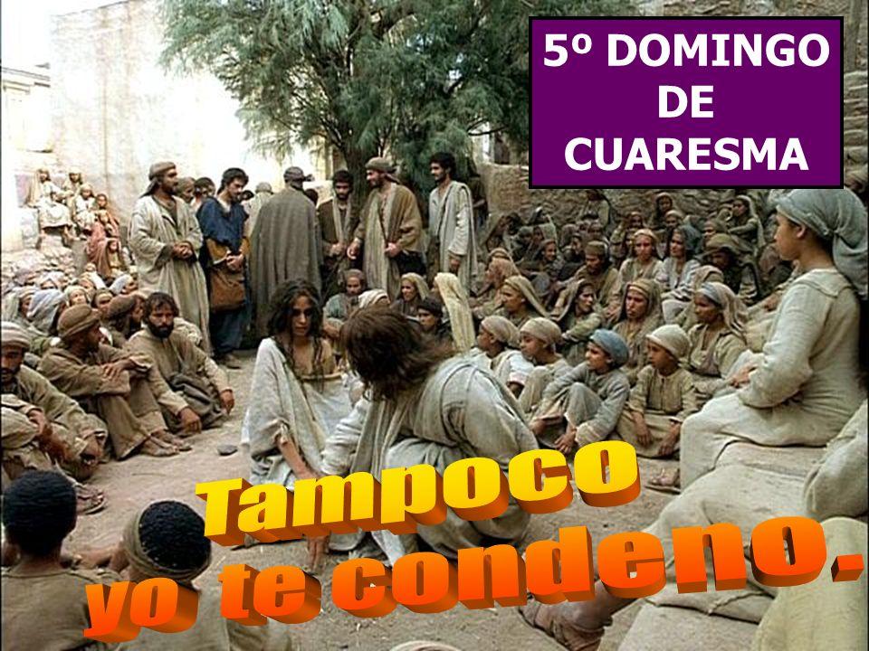 La Liturgia de hoy nos recuerda que la Cuaresma no es un tiempo para tirar piedras, sino para construir la fraternidad.