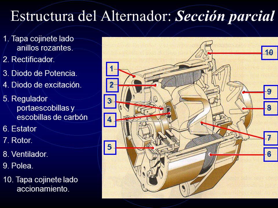Estructura del Alternador La estructura básica de un alternador esta formada por : 1.Devanado estatórico trifásico como parte fija. 2.Devanado de exci