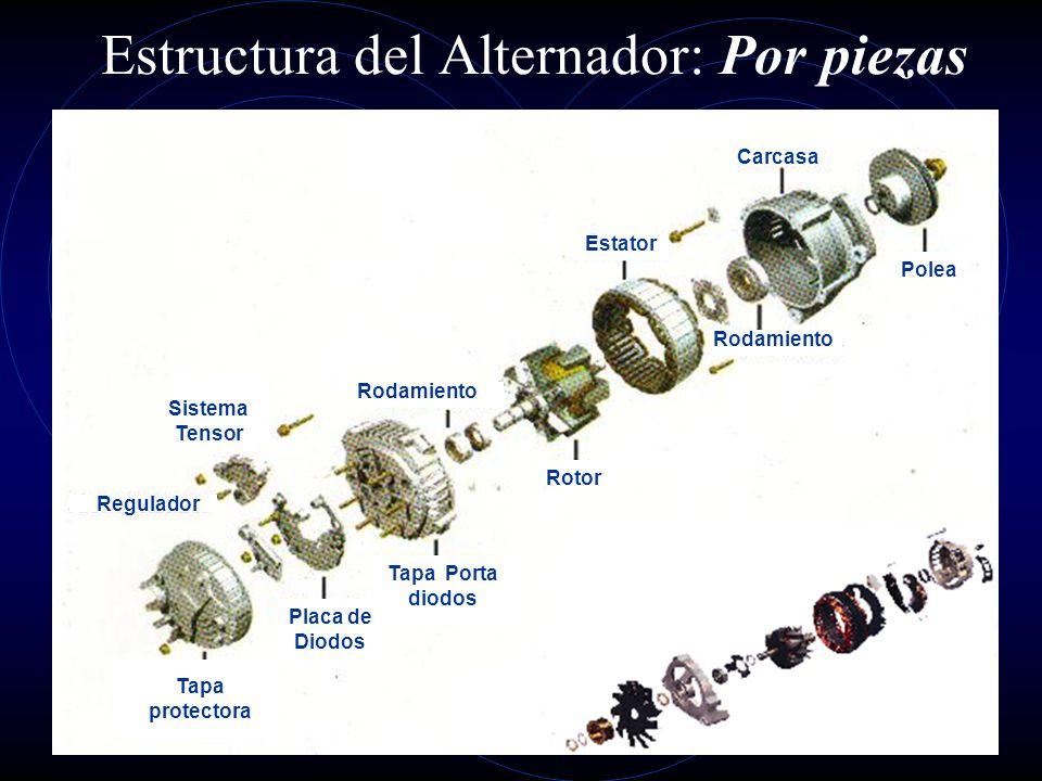 Estructura del Alternador: Sección parcial 1 2 3 4 5 6 7 8 9 10 1. Tapa cojinete lado anillos rozantes. 2. Rectificador. 3. Diodo de Potencia. 4. Diod