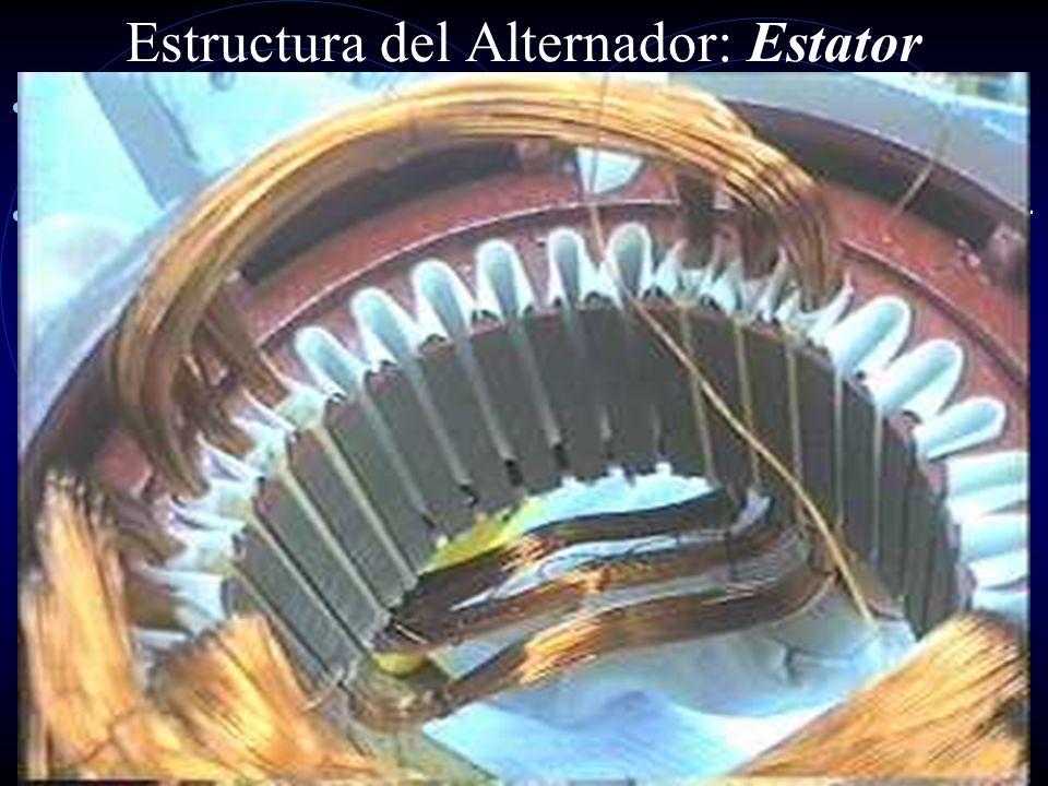 Estructura del Alternador: Por piezas Tapa protectora Placa de Diodos Tapa Porta diodos Regulador Sistema Tensor Rodamiento Rotor Estator Rodamiento C