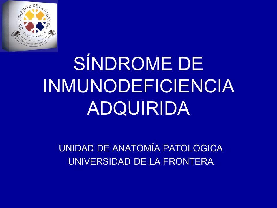 SÍNDROME DE INMUNODEFICIENCIA ADQUIRIDA UNIDAD DE ANATOMÍA PATOLOGICA UNIVERSIDAD DE LA FRONTERA