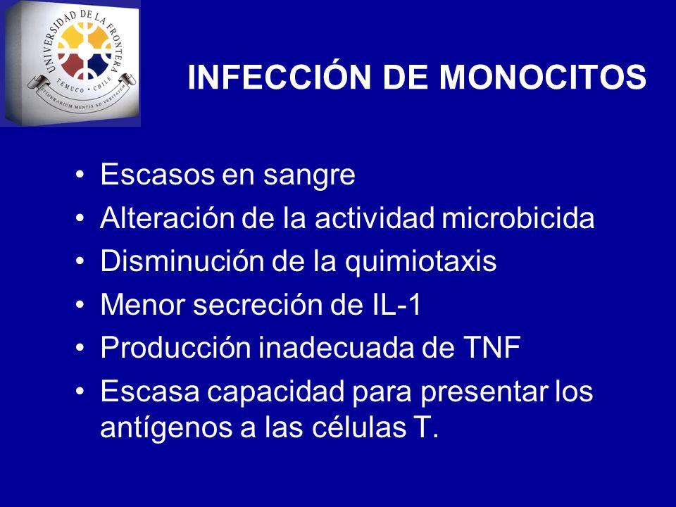 INFECCIÓN DE MONOCITOS Escasos en sangre Alteración de la actividad microbicida Disminución de la quimiotaxis Menor secreción de IL-1 Producción inade