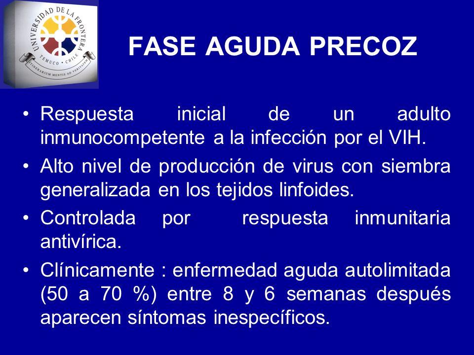 FASE AGUDA PRECOZ Respuesta inicial de un adulto inmunocompetente a la infección por el VIH. Alto nivel de producción de virus con siembra generalizad