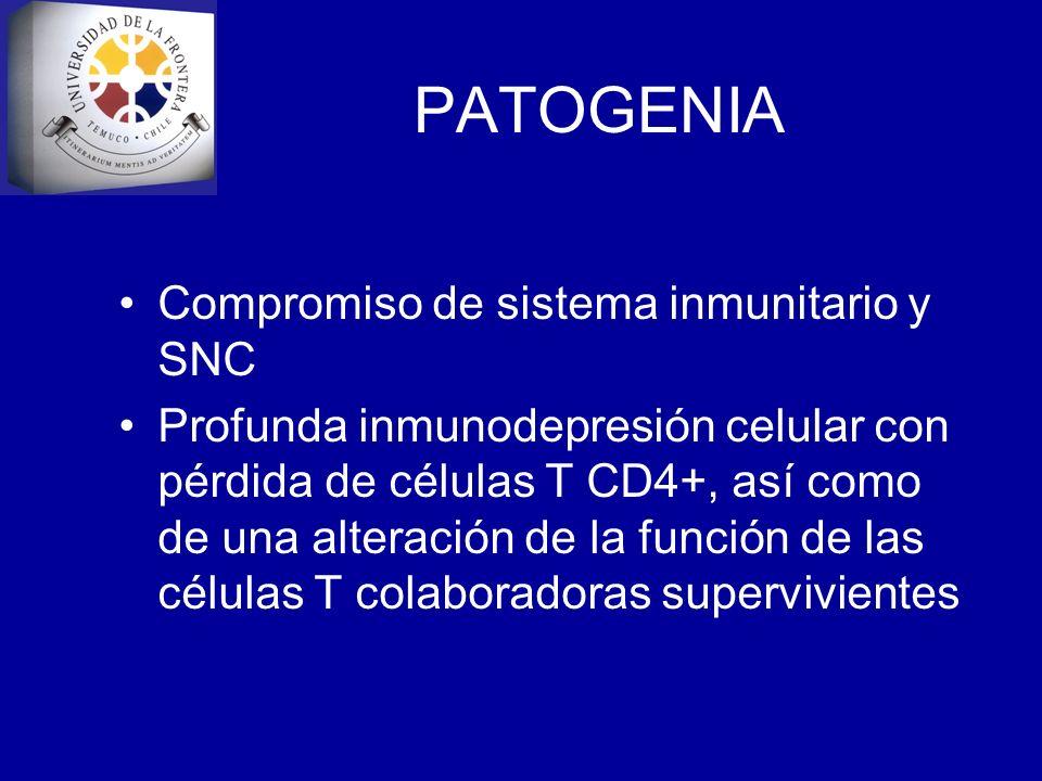 PATOGENIA Compromiso de sistema inmunitario y SNC Profunda inmunodepresión celular con pérdida de células T CD4+, así como de una alteración de la fun