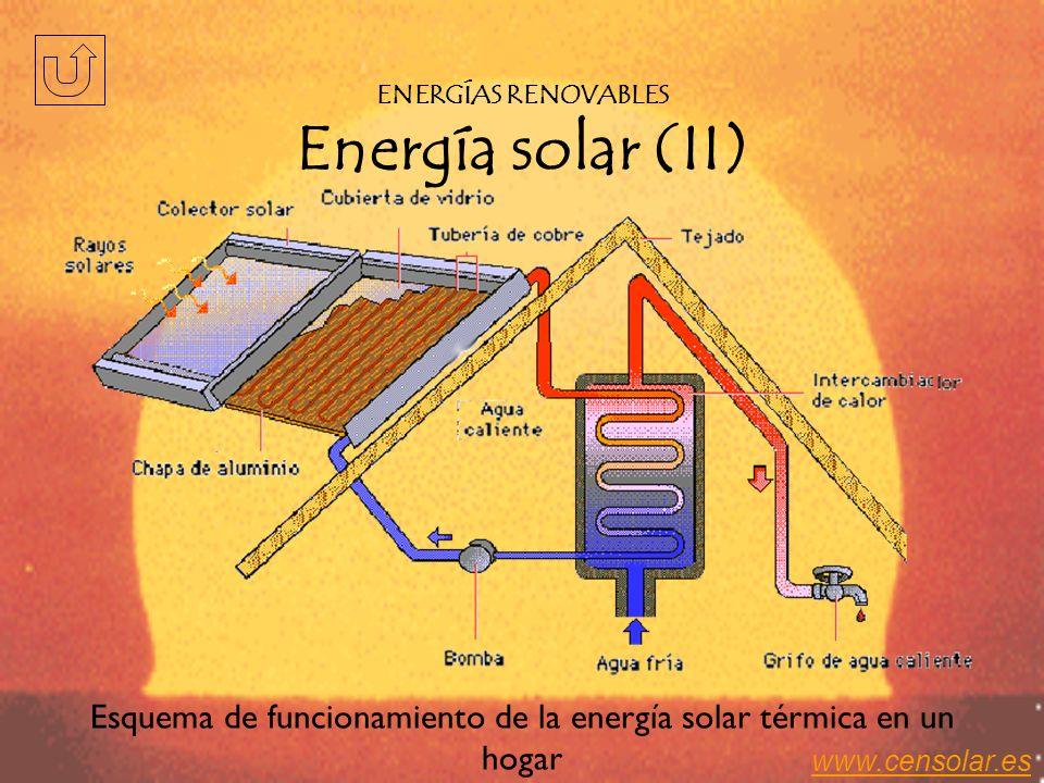 La radiación solar se aprovecha de dos formas: –Indirecta: el sol origina las energías eólica, hidráulica, biomasa, etc. –Directa: aprovecha el calor